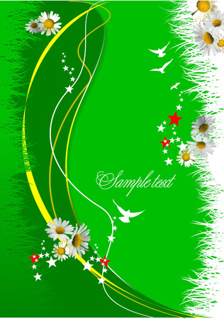 oxeye: Green  floral background. Vector illustration