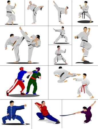 kemer: Oriental combat sports. The sportsman in a position. Wushu. KungFu. Karate.