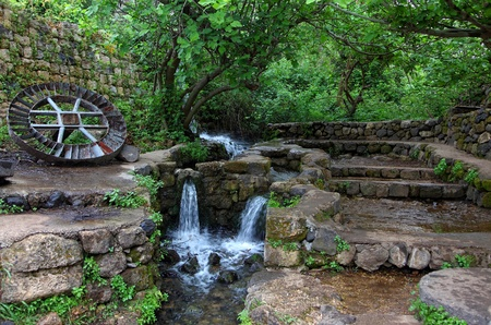 nature reserves of israel: Resting place.Early Spring.Banias is a nature reserve in the Golan Heights.Israel