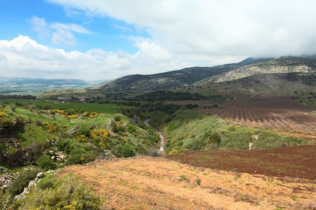 Wild Landscape With Golan Heights,Israel  photo