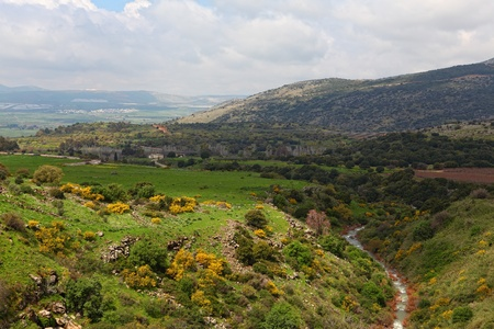 Wild Landscape With Golan Heights; Israel