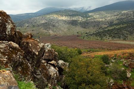 banias: Wild Landscape With Golan Heights;Banias, Israel