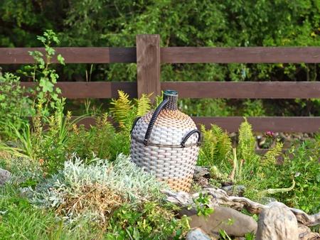 Wattled wine bottle in grass photo