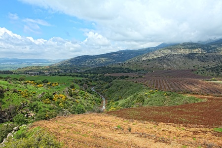israel agriculture: Wild Landscape With Golan Heights,Israel