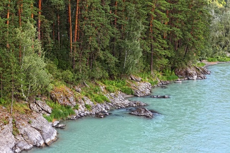 landscape with river and forest  Stock Photo - 13464146
