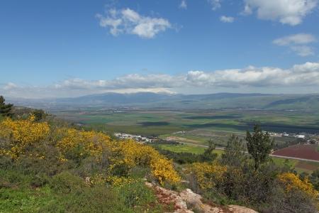 golan: Landscape With Golan Heights,Israel