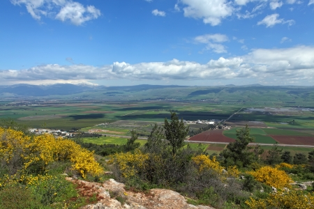 banias: Landscape With Golan Heights,Israel