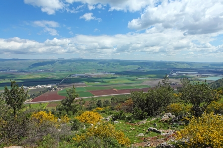 Landscape With Golan Heights,Israel  photo