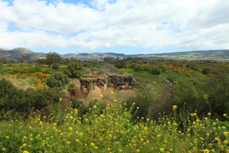 banias: Wild Landscape With Golan Heights,Israel