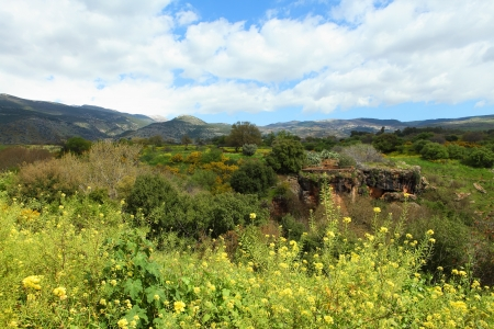 golan: Wild Landscape With Golan Heights,Israel