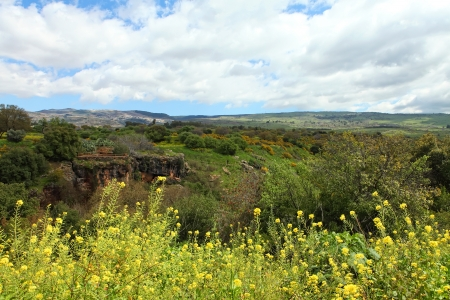 syria peace: Wild Landscape With Golan Heights,Israel