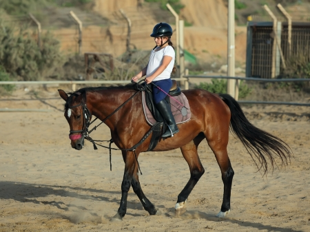 little girl is riding a horse  Stock fotó