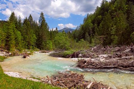 Bistrica River in National Park Triglav - Slovenia  Stock Photo