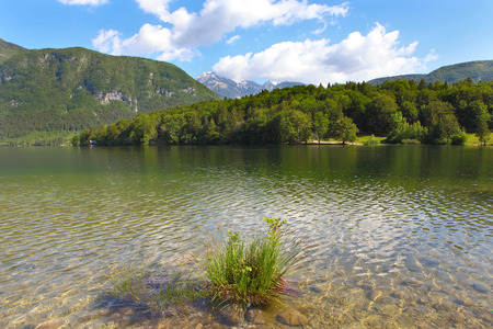 bohinj: Mountain Lake bohinj in Julian Alps, Slovenia  Stock Photo