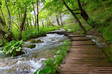 Houten pad in het Plitvice Nationaal Park, Kroatië