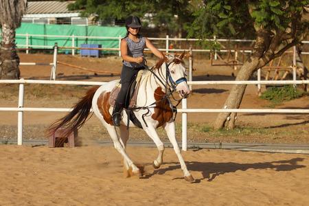 horse sleigh: Horseback riding, lovely equestrian - young girl is riding a horse