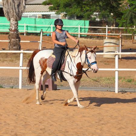 horse sleigh: A little girl getting a horseback riding lesson