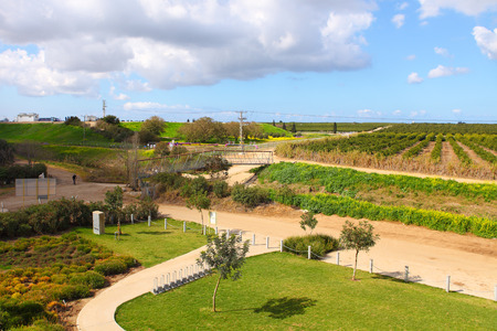 Early spring in Israel. Countryside with green field and rural curving road Stock Photo