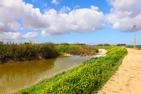 A view of Nahal Alexander (Alexander stream) nature reserve. Israel Stock Photo