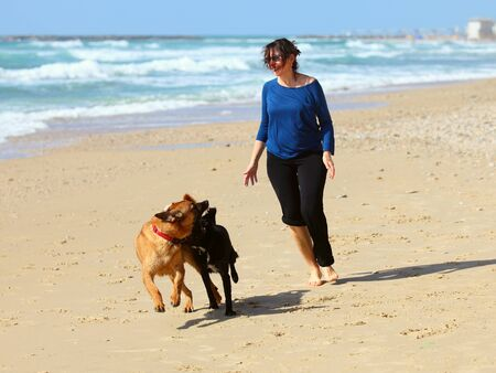 Mature Woman playing with her dogs on the beach Foto de archivo