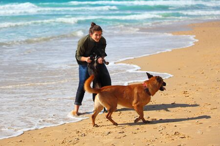 Teenage girl  playing with her dogs on the beach 免版税图像