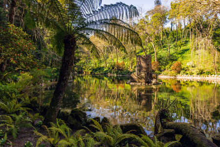 Beautiful pond in the Pena park near the famous Pena National Palace. Sintra, Portugal