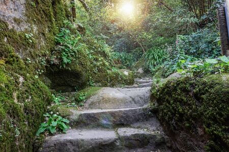 Stone stairs covered moss in Medieval cloister of the Capuchin monastery in Sintra, Portugal