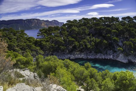 Amazing viewpoint on the Calanques de Port Pin bay, Calanques National Park near Cassis fishing village, Provence, South France, Europe