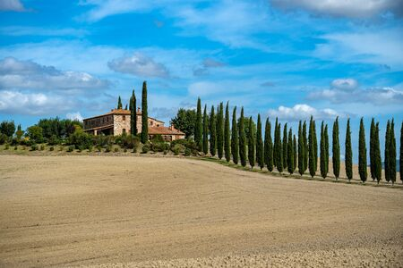 Cypress Trees rows on road to rural house, landscape in orcia near Siena, Tuscany, Italy, Europe. Banco de Imagens
