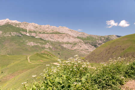 Mountain landscape with green meadow. Mountain valley panorama