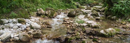 Mountain river flowing through the green forest. Water flows over rocks. Wide background