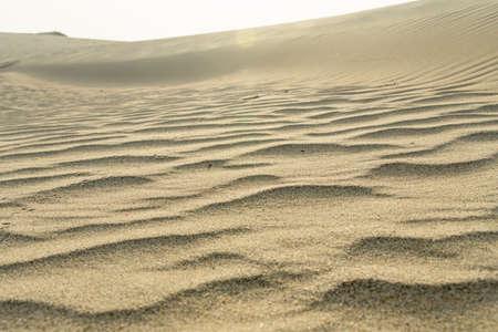 Sand of desert close-up. Middle East desert Stockfoto