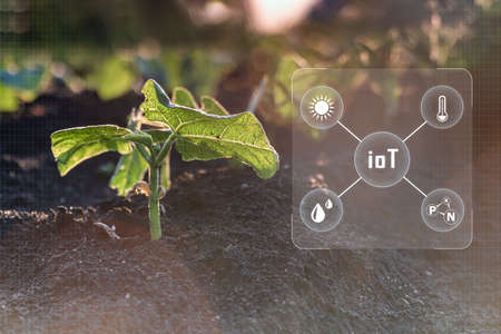 Internet of things industrial agriculture,smart farming concepts,the various farm technology in the futuristic icon.