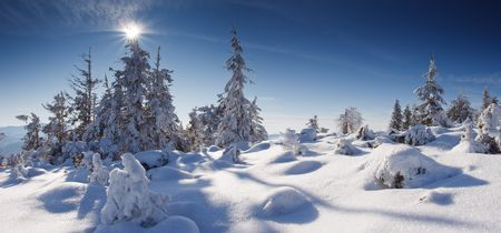 A frosty and sun day is in mountains photo