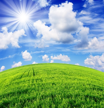 lente veld en de mooie blauwe hemel