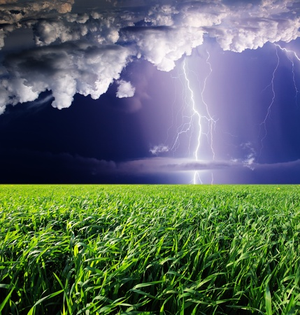 dazzle: Thunderstorm with lightning in green meadow. Dark ominous clouds.