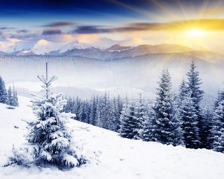 montañas nevadas: Puesta de sol en el majestuoso paisaje de montaña invierno. El cielo dramático.