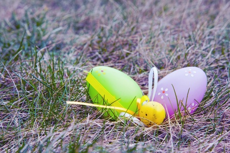 Colorful Easter eggs decorated in the grass photo