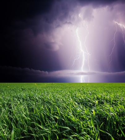 storm background: Thunderstorm with lightning in green meadow  Dark ominous clouds  Stock Photo