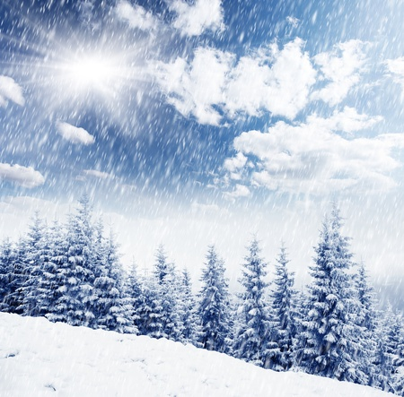 hoar: A frosty and sunny day is in mountains Stock Photo