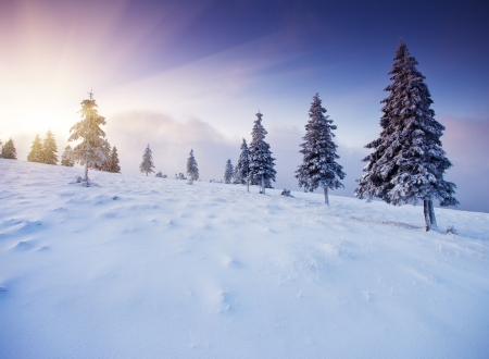 Majestic sunset in the winter mountains landscape  HDR image