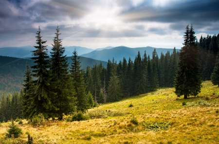 The mountain autumn landscape with colorful forest Stock Photo
