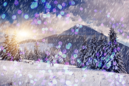 A frosty and sunny day is in mountains. Christmas abstract bokeh photo