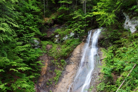 Tranquil waterfall scenery in the middle of green forest Stock Photo - 16949589