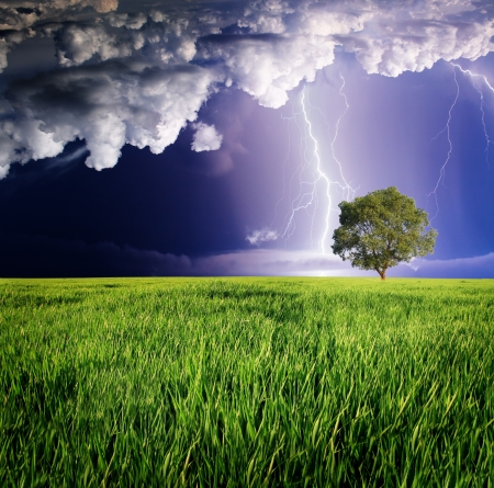 thunderclap: Thunderstorm with lightning in green meadow.