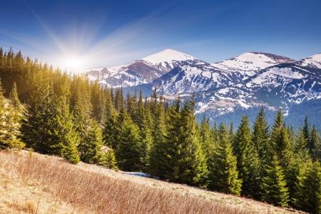 18806621-belle-journee-ensoleillee-est-dans-le-paysage-de-montagne-carpates-ukraine-europe