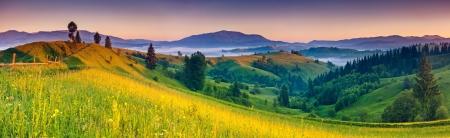 朝の晴れた日は、山の風景です。カルパチア、ウクライナ、ヨーロッパ。美の世界。