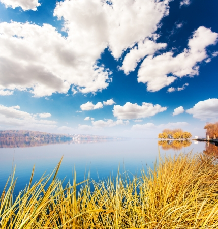 Dry grass on the lake with blue sky. Ternopil, Ukraine, Europe. Beauty world.