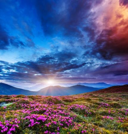 carpathian mountains: Majestic sunset in the mountains landscape. Overcast sky before storm. Carpathian, Ukraine, Europe. Beauty world. Stock Photo