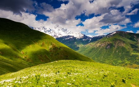 Alpine meadows with dramatic sky at the foot of  Mt. Shkhara. Upper Svaneti, Georgia, Europe. Caucasus mountains. Beauty world. photo
